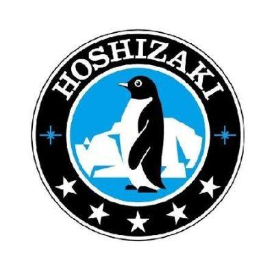 Hoshizaki TOP KIT DB200H/KMD Ice Bin Kits Accessories