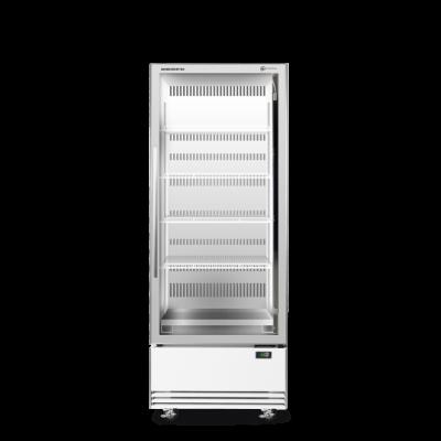 SKOPE BME600N-A 1 Glass Door Display or Storage Fridge